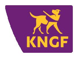 KNGF 300x222